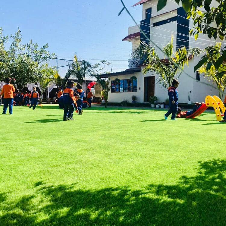 Artificial Grass Dealers